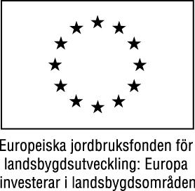 EU flagga 2 Svartvit - jpg
