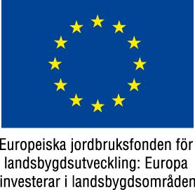 EU flagga 2 Färg - jpg